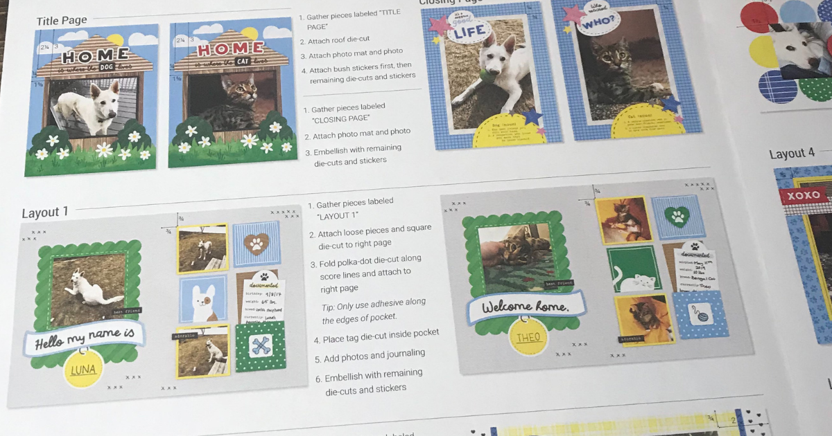 use the instructions to make a one of a kind pet scrapbook album using designs and ideas